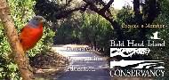 Baldhead Island Conservancy