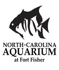 Fort Fisher Aquarium