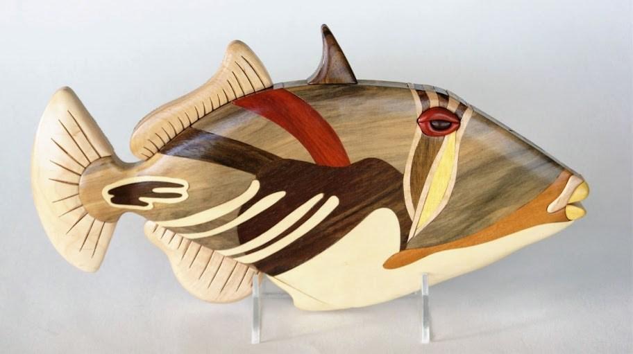 brad-hazel-eklund-picasso-triggerfish
