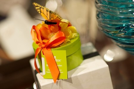 adorned butterfly box