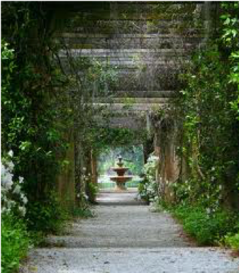 The Rich History of Arlie Gardens
