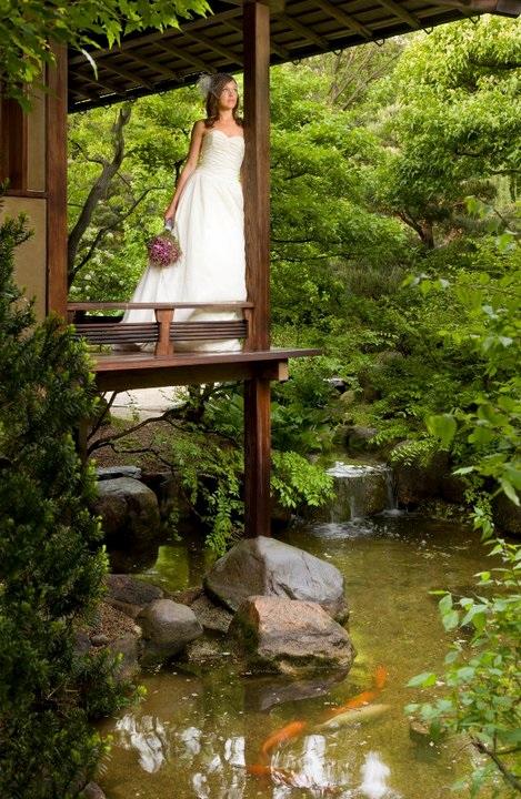 Anderson Japanese Gardens - 3