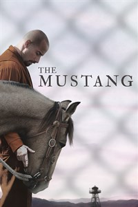 The Mustang - Now Playing on Demand