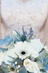Cactus Flower - 2