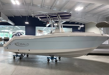 2021 Robalo R222 Ice Blue/White  Boat