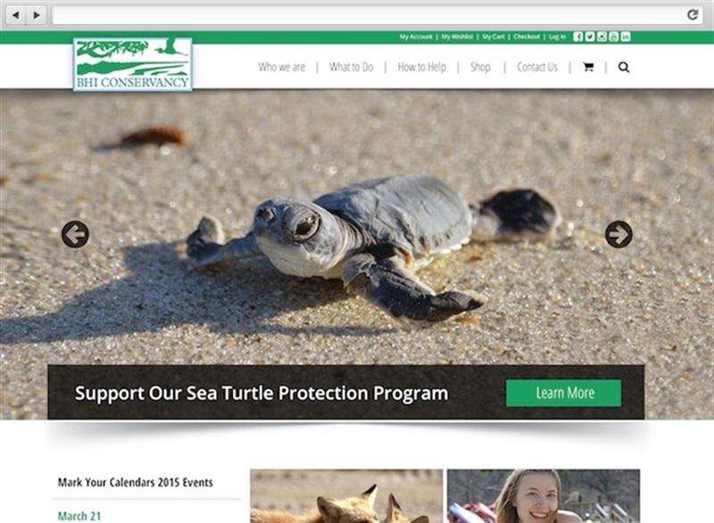 Bald Head Island Conservancy